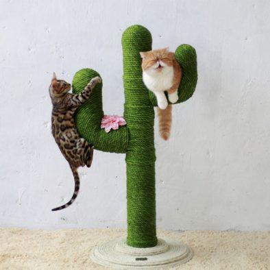 Kedi Tırmalama Direği