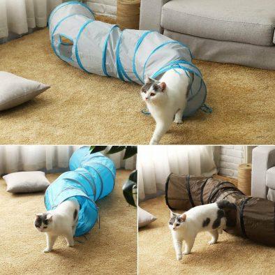 Kedi Tüneli