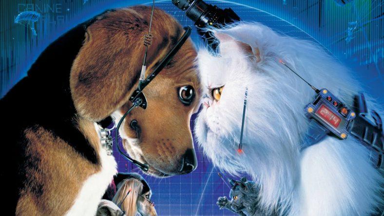 Cats & Dogs (Kediler ve Köpekler)