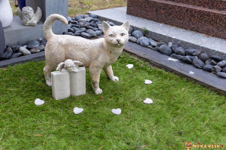 Kedim Öldü Unutamıyorum!