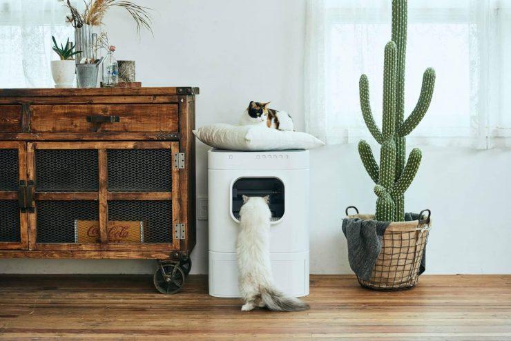 En İyi Akıllı Kedi Tuvaleti