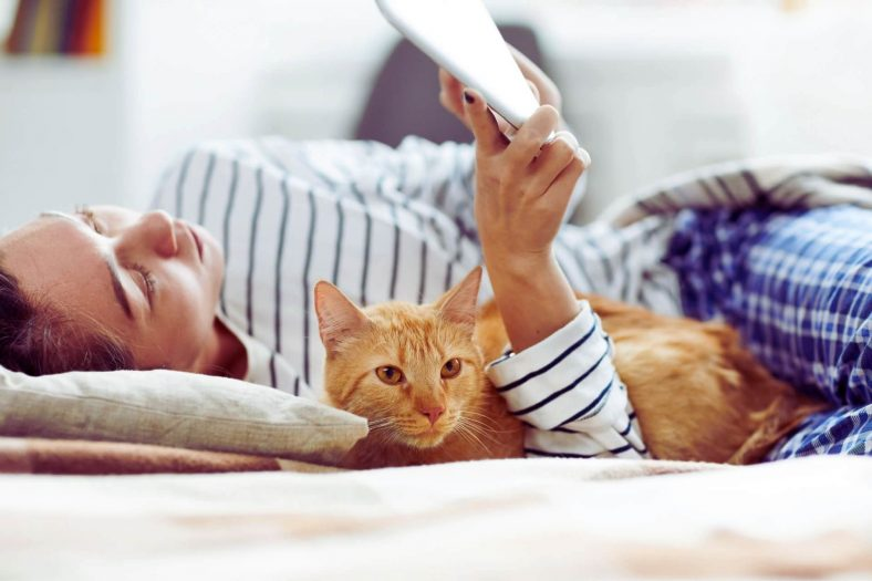 Kediler Sahibini Tanıyor mu?