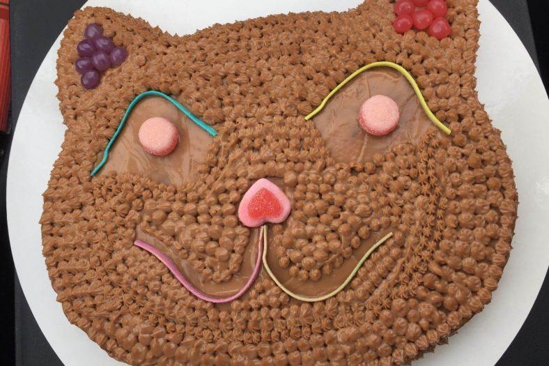 Kediye Doğum Günü Pastası